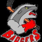 Badgers Spaichingen II